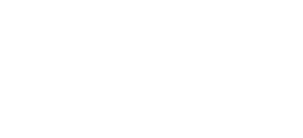 Papillon Marketing Solutions
